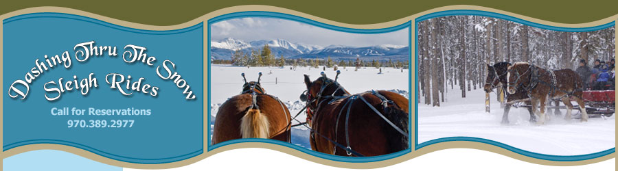 Dashing Thru The Snow Sleigh Rides - Call for Reservations