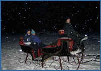 Private sleigh evening ride