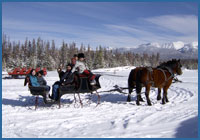 Private sleigh ride with great views